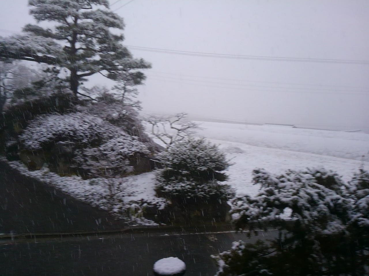 季節外れの雪景色